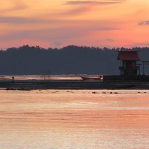 漁港の日の出風景