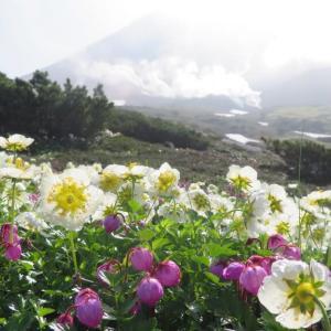 大雪山主峰・・旭岳登山