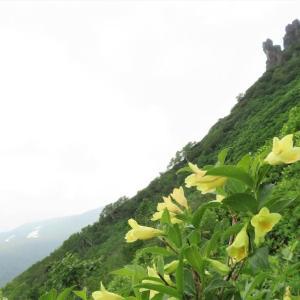 大雪山系・・黒岳登山
