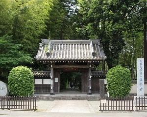 「正覚寺」でアジサイとハナショウブを堪能!!