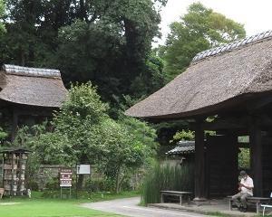 「西方寺」のヒガンバナとハギが共に見頃で素晴らしい!!