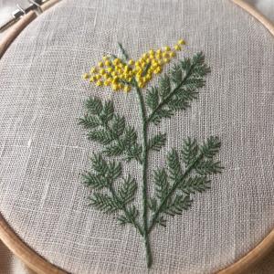 糸で描く植物、刺し始めました