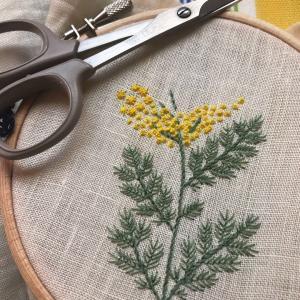 「糸で描く植物」小さすぎて反省