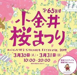 第65回小金井桜まつり