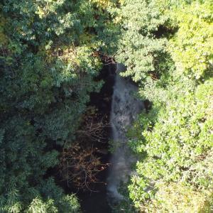 雲母(きらら)の里公園の紅葉と市野滝