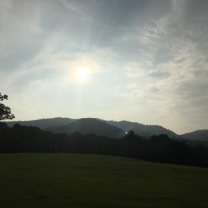 8月の朝散歩