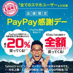 PayPyaキャンペーン失敗!