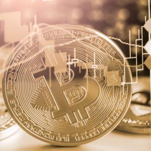 デジタル通貨、国内整備へ