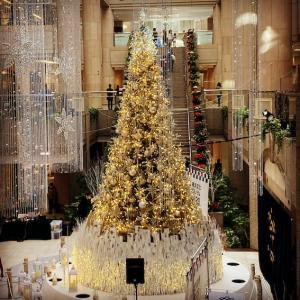 クリスマスツリーと鼎泰豊♪