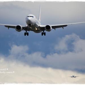 いつかの飛行機*