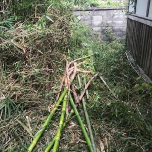 田舎の草刈り作業及び除草剤散布作業