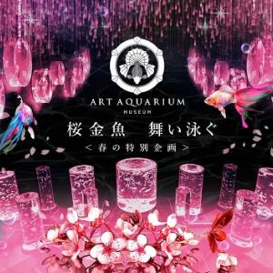 アートアクアリウム美術館Ⅳ