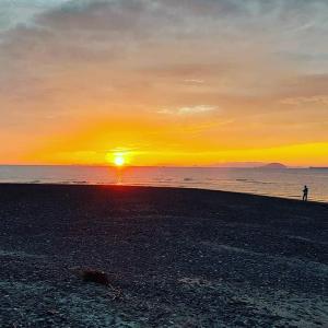 明日は塩屋海岸でビーチクリーン・わたしは午前ねじねじ午後診療
