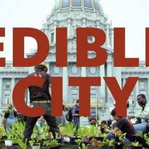 都市を耕すエディブル・シティーの上映会を松山で一緒に観ませんか♪