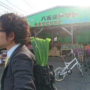 自転車で(略)
