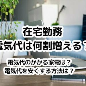 在宅勤務で増える電気代。何割増えるか、我が家7か月分の電気使用量を公開。電気代を安くする方法は?