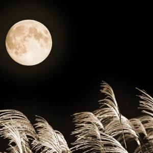 2021年の十五夜(中秋の名月)は9/21 月の浄化作用を生活に取り入れ、ストレス解消に役立てよう