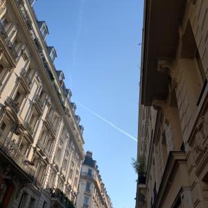 ミシュラン1つ星パリの日本人シェフのお店♪Pilgrim ピリグリム