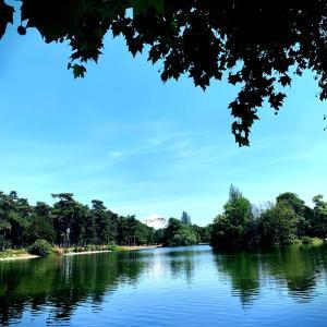 パリさんぽ♪リアル白鳥の湖とドンキ