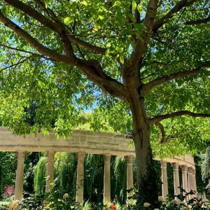 パリ17区のモンソー公園散策♪おすすめです♡