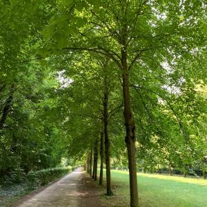 エッフェル塔が見える広大な公園の森をウオーキング♪