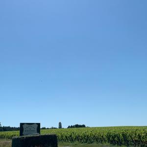 6月のフランスプチバカンス♪ボルドーワインのシャトー訪問の巻