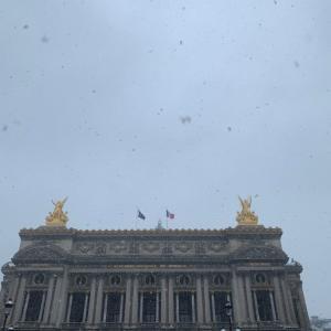 雪のパリのピンクパンサー
