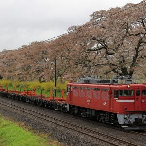 一目千本桜とED75-758牽引の翁島工臨返空