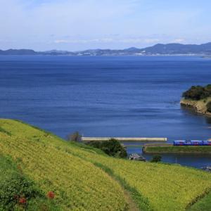 九州から帰りました