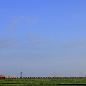 朝日を浴びて八郎潟を往く、ED75-767牽引の岩切ロンチキを撮る!(東能代工臨編)