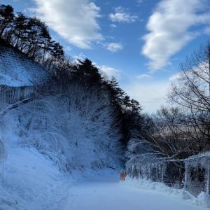 スノーボードに行ってきました☆PMK渋谷店