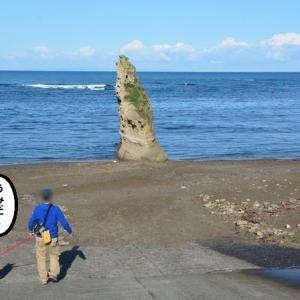 岩より昆布漁!?