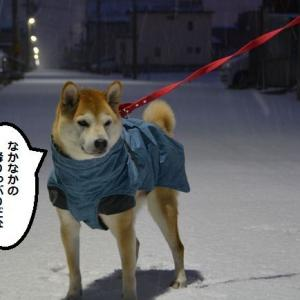 解凍中!?