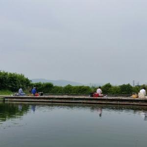 平成27年7月29日(水) 釣果報告 厚木へら鮒センター