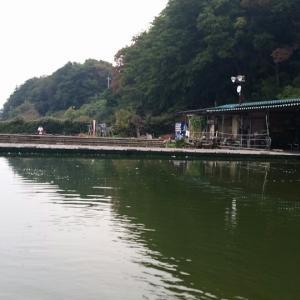 平成28年11月14日(月) 釣果報告 厚木HC