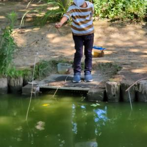 夏休み初日 ザリガニ釣り
