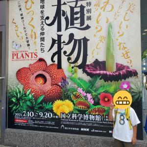 国立科学博物館 特別展「植物」地球を支える仲間たち