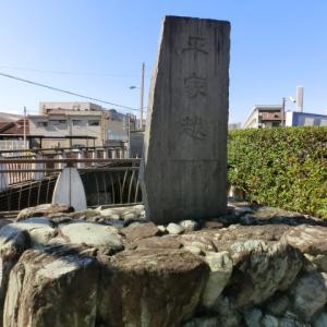 源頼朝の挙兵と富士川の戦い