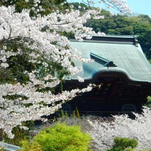 鎌倉が「湘南」発祥の地かも・・・