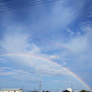 虹☆゚・*:.。..。.:*・゚ヾ(б_б*≡*б_б)ノシ・゜゚・ *:.。..。.:*☆