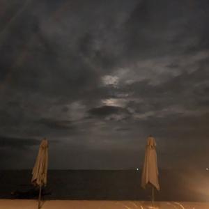 満月の夜はこちらで@バリ島