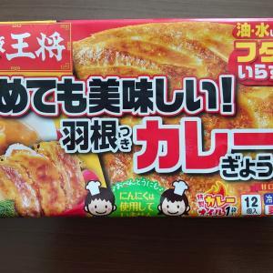 大阪王将 カレーぎょうざ (冷凍食品)