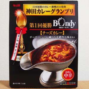 S&B食品 ボンディ チーズカレー (レトルト)