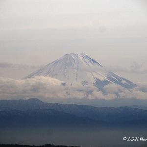 今日の山たち