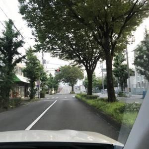 湖産のアユ釣り その③  ~ れいかい カレー 空飛ぶクルマ ^^ ~