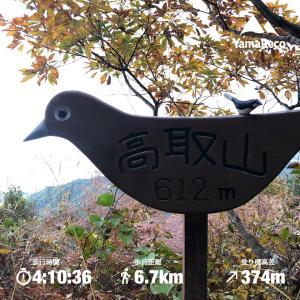 向山・高取山・松尾寺山縦走(滋賀県)