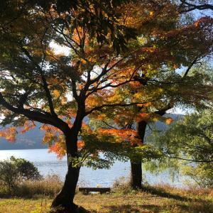 賤ヶ岳・大平良山(滋賀県) 余呉湖の周囲の山をぐるっと一周