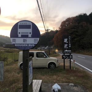 焼肉竹の親父の山歩記 笹ヶ岳(滋賀県) 頂上で狸と出会う