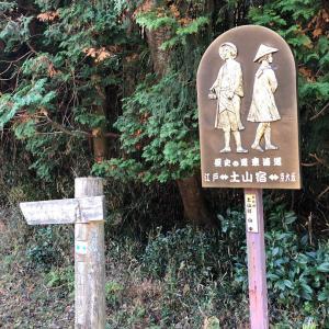 高畑山(滋賀県) 山頂でサムシング・グレイト・シェア