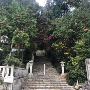 焼肉竹の親父の山歩記 長命寺山・奥島山(滋賀県)冬空奏でる曇り時々晴、後黄昏